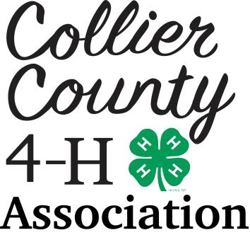 I created this logo for the Collier County 4-H Association in South Florida.