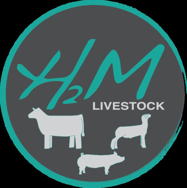 Logo created for Erin Hebert of H2M Livestock.