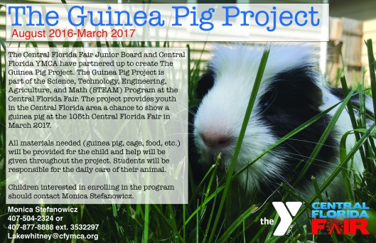 The Central Florida Fair created The Guinea Pig Project to pair up underprivileged youth from the YMCA with a guinea pig project to show at the 2017 Central Florida Fair. I created this flyer to hand out to families in the YMCA program.