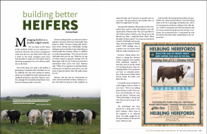 Article I wrote for Tri State Livestock News that was published in The Cattle Journal- Beef and Business 2017. This article focuses on techniques for building better replacement heifers.
