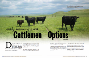 Article I wrote for Tri State Livestock News that was published in The Cattle Journal- Beef and Business 2017. This article focuses on the environmental and financial benefits of early weaning calves.
